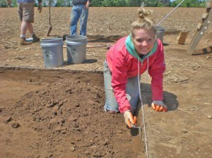 Archeology Volunteer