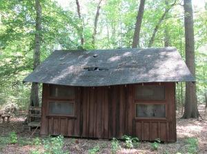 Cabin 7-West Elevation