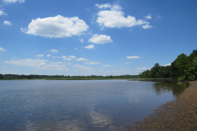 River Farm site